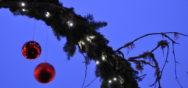 Berner Muenster Weihnachtsmarkt 2010 1587 Album Berner Münster Weihnachtsmarkt