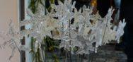 Stimmung 2 Bmw 12172 Album Berner Münster Weihnachtsmarkt