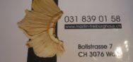 Impressionen 14126 Album Berner Münster Weihnachtsmarkt