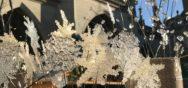 Allgemein 1 17   15 Album Berner Münster Weihnachtsmarkt