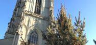 Allgemein 1 17   7 Album Berner Münster Weihnachtsmarkt