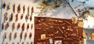 Allgemein 3 17   18 Album Berner Münster Weihnachtsmarkt