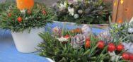 Album15009 Album Berner Münster Weihnachtsmarkt